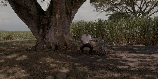 4636048_3_1e00_une-scene-du-film-colombien-de-cesar-acevedo_97903041dd8b2a368bd3f8bf911e0e82